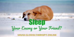 image displays a sleeping dog on a beach and text sleep your enemy or your friend?